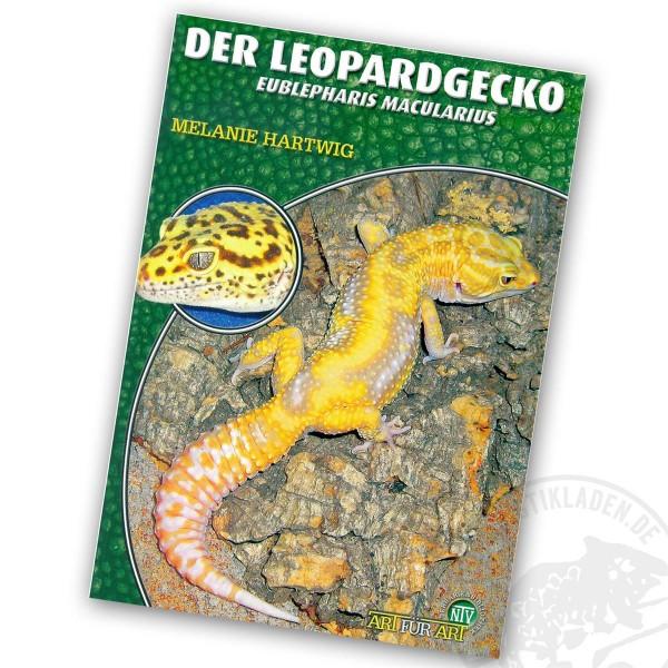 Art für Art Der Leopardgecko