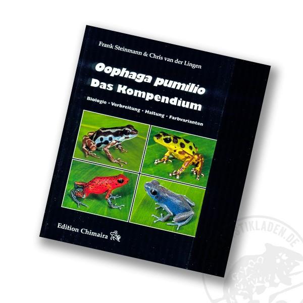 Oophaga pumilio Das Kompendium.