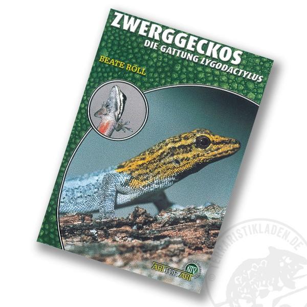 Art für Art Zwerggeckos (Lygodactylus)