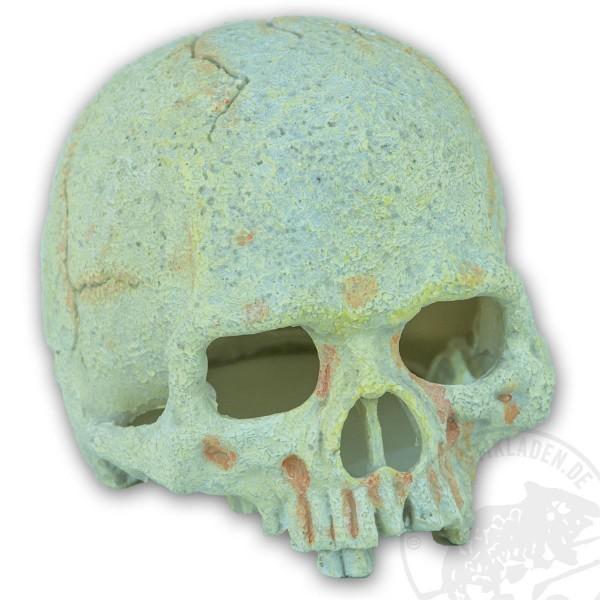 Exo Terra Primate Skull - klein