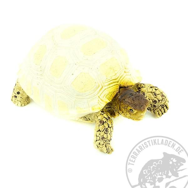 Turtle Dekoschildkröte Geochelone