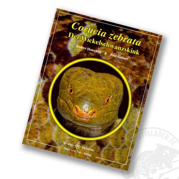 Der Wickelschwanzskink - Corucia zebrata