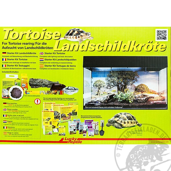 Landschildkröten Terrarium Starter Kit