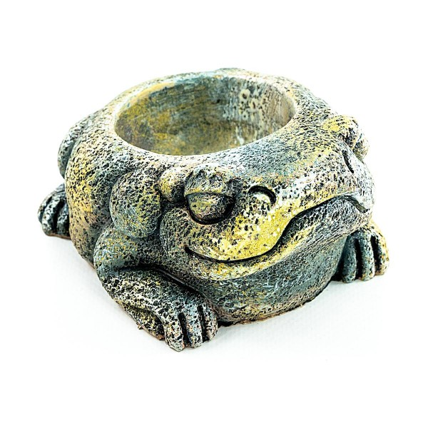 Aztec Frog Wasserschale