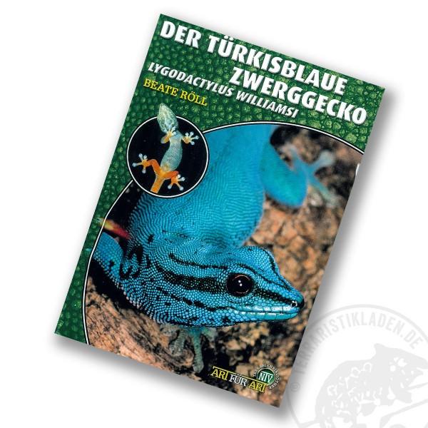 Art für Art Der Türkisblaue Zwerggecko