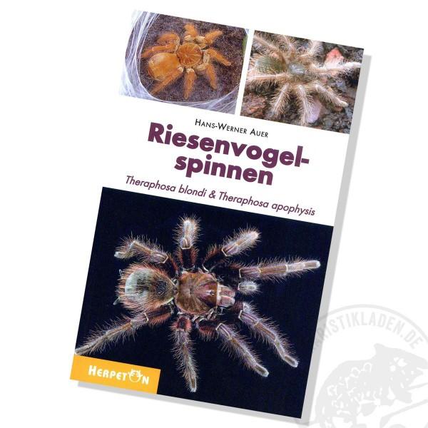 Riesenvogelspinnen / Theraphosa blondi & T. apophysis