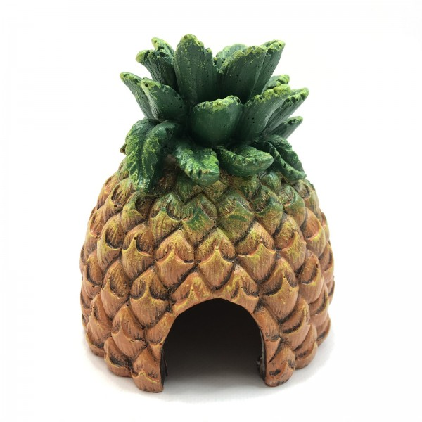 Pineapple Hide Ananashöhle