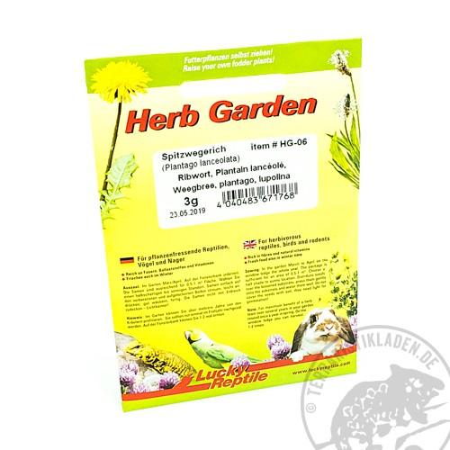 Lucky Reptile Herb Garden Spitzwegerich