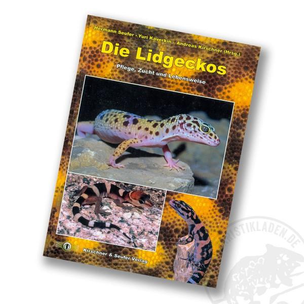 Die Lidgeckos - Kirschner & Seufer