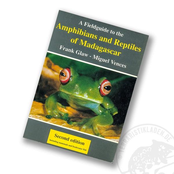 Amphibien und Reptilien Madagaskar