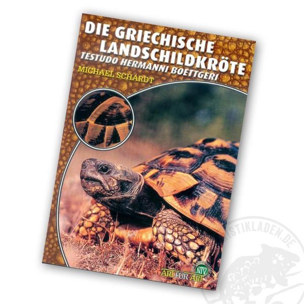 Art für Art Die Grieschiche Landschildkröte - Testudo hermanni boettgeri
