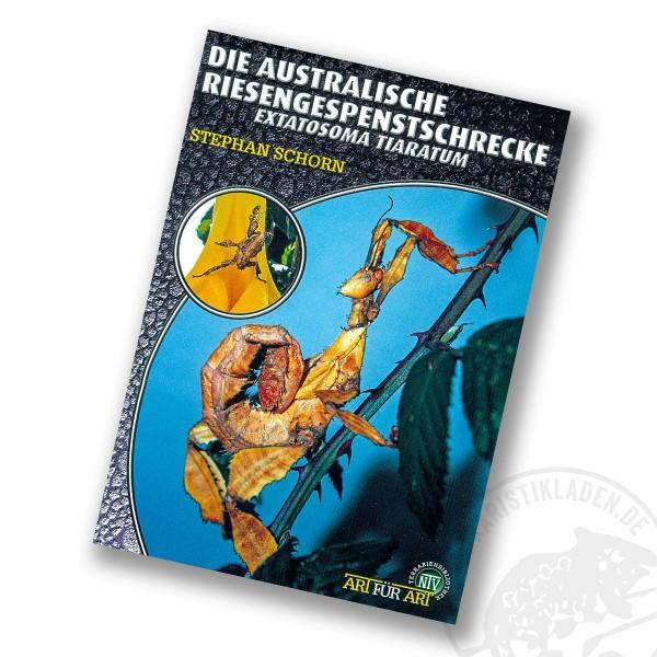 Art für Art Die Australische Riesengespenstschrecke
