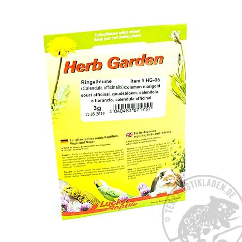 Lucky Reptile Herb Garden Ringelblume
