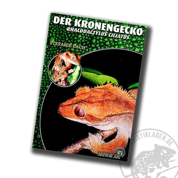 Der Kronengecko Correlophus